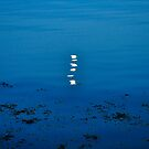 ... and the moon rising over galway, eire by gary roberts
