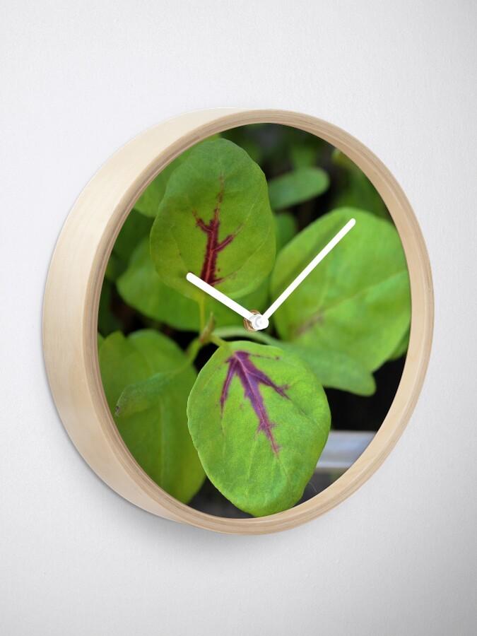 Alternate view of Calalloo Clock
