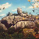 Sail Rock - Magnetic Island by Cary McAulay