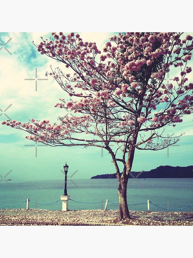 Blooms by the Sea - Panama Landscape  by OneDayArt