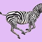 Zebra Purple by Meaghan Roberts