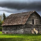 Old Log Barn by Teresa Zieba