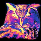 Psychedelic Spectrum Owl by 319media
