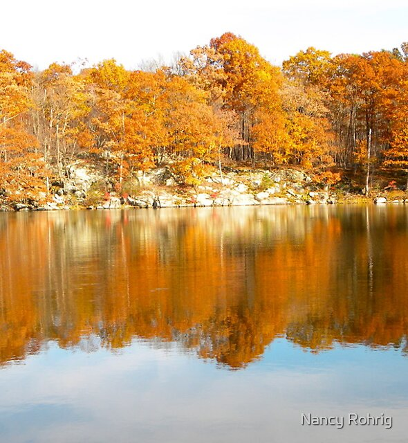 Fall colors by Nancy Rohrig