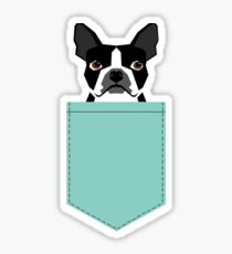 Logan - Boston Terrier pet design with bold and modern colors for pet lovers Sticker