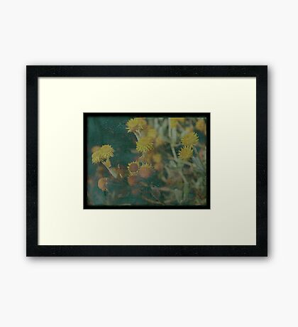 Wither Framed Print