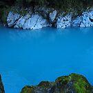 Hokitika Gorge by Paula McManus