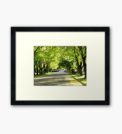 It's Finally Spring Framed Print