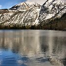 June Lake Loop by Barbara  Brown