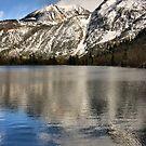 June Lake Loop by Barbara  Brown