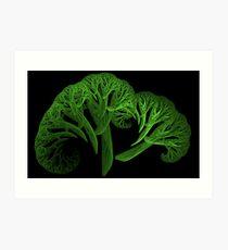 Apo Broccoli Art Print