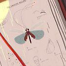 «Libro de insectos» de tinatamay