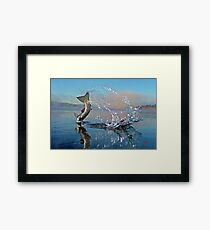 Adirondack Life Photo Framed Print