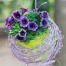 hanging bellflower for home decor von spetenfia