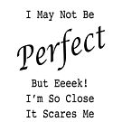 I May Not Be Perfect. But Eeeek! I'm So Close It Scares Me by ellendean