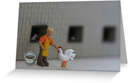 Henny thought it was good to be 'plucky'; then she met Cooter, the official chicken 'plucker'. by Susan Littlefield