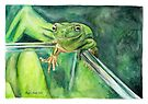 Hop The Frog by Meaghan Roberts