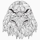 Lined Eagle by Ewan Arnolda