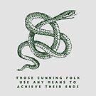Cunning Folk by Mary Scarlett LaBerge