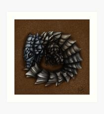 Girdled Armadillo Lizard Art Print