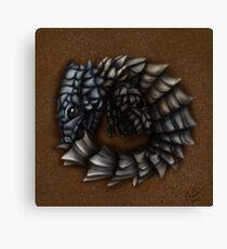 Girdled Armadillo Lizard Canvas Print
