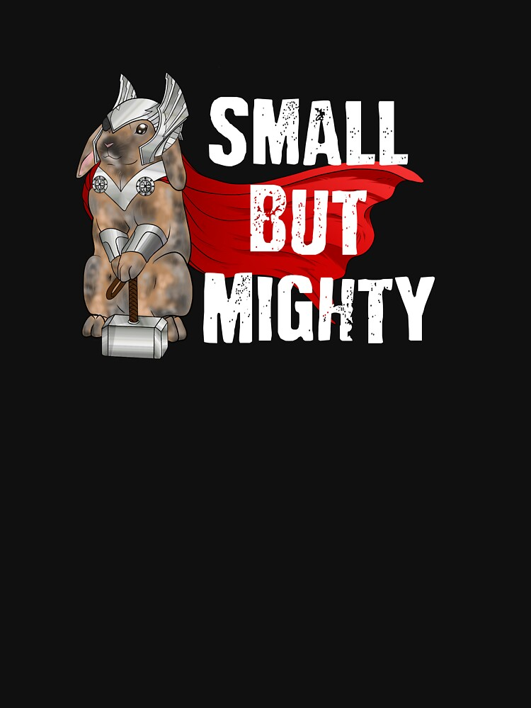 Small But Mighty Bunny Thor by Home4EveryBunny