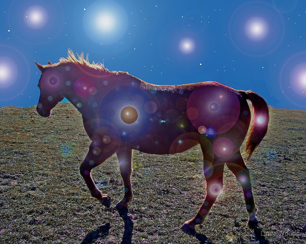 Monte's Magical Night by Linda Woods