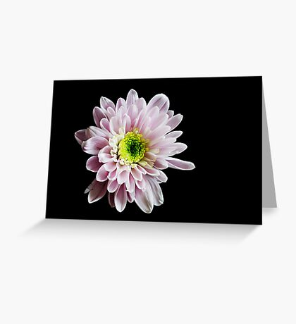 See how I shine for you Greeting Card