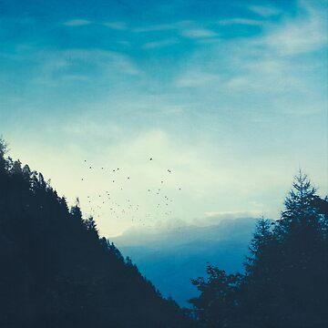 Beautiful Mountain Morning by DyrkWyst