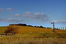 Blayney NSW - Country Roads No 1 by Rosalie Dale