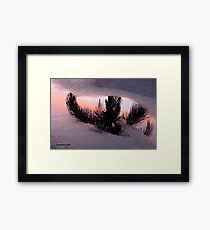 Florida Puddle Reflection Framed Print