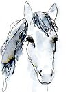 Portrait of a Horse, Watercolor in Blue by Kendra Shedenhelm