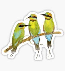 Rainbow Bee Eater Bird Sticker