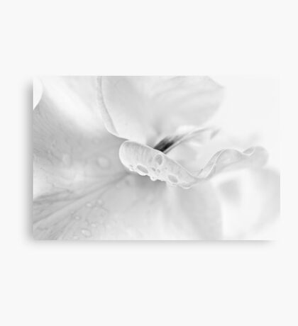 Dreaming in black and white Canvas Print