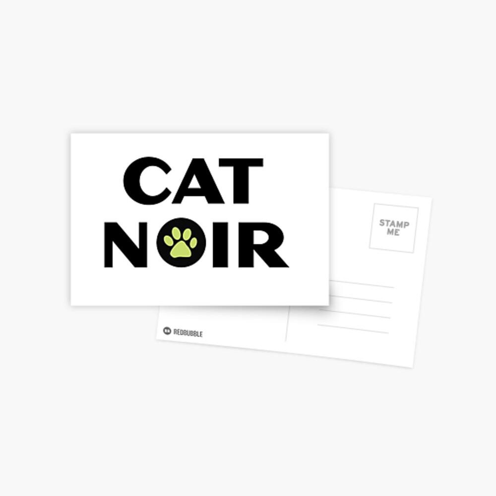 Miraculous Black Cat Noir Postkarte