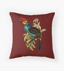Grey-breasted Mountain-toucan (Andigena hypoglauca) Throw Pillow