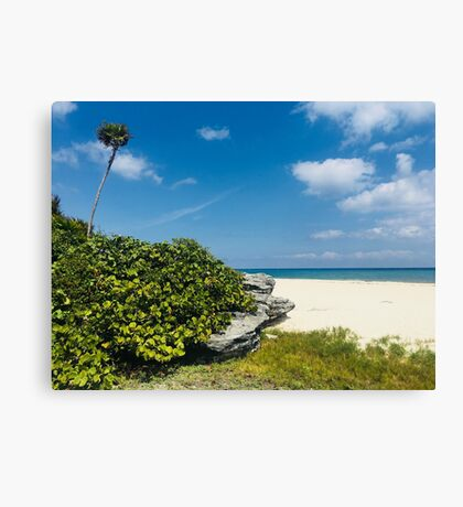 Beach in PlayaCar (Pictures of Mexico) Canvas Print