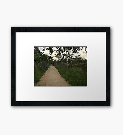 Path in Playa del Carmen (Pictures of Mexico) Framed Print