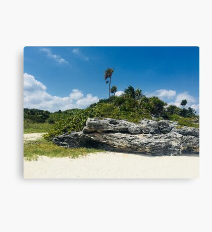 PlayaCar 2 (Pictures of Mexico) Canvas Print