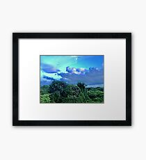 Purple Trees (Pictures of Mexico) Framed Print