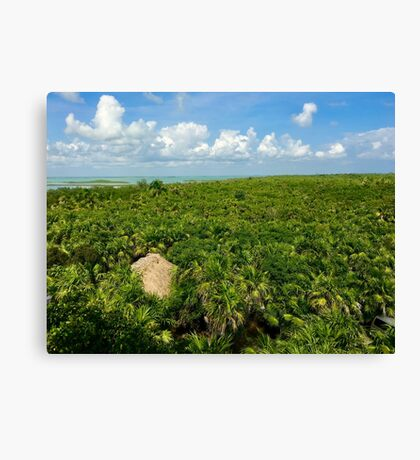 Sian Ka'an (Pictures of Mexico) Canvas Print