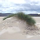 Sanddüne mit Mohikanerhaarschnitt - Western Isles von BlueMoonRose