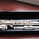 The Sound of Silver - A Flute in its Case von BlueMoonRose