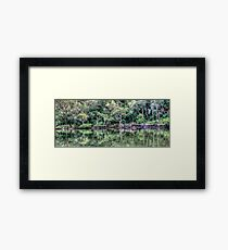 Pittwater Paradise Framed Print