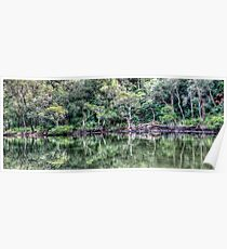 Pittwater Paradise Poster