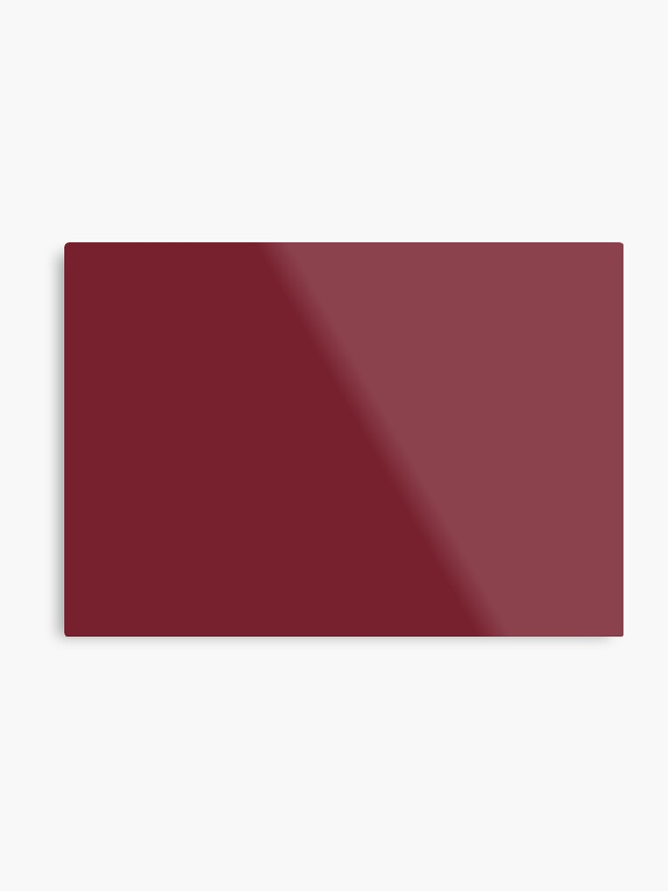 Biking Red 19-1650 TCX | Pantone | Color Trends | New York | Fall Winter  2019 2020 | Solid Colors | Fashion Colors | | Metal Print