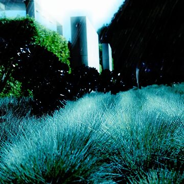 Alien Landscape - Getty Museum Gardens in Los Angeles by stine1