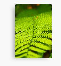 Green Impression Canvas Print