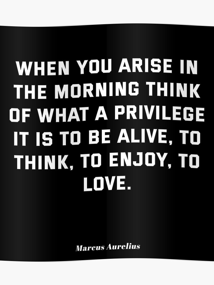 Marcus Aurelius Stoic Quotes Privilege To Be Alive Poster By