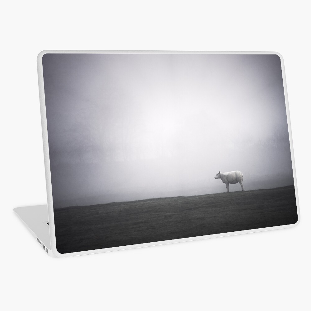 """""""A Moment Of Calm"""" by Cat Burton Laptop Skin"""